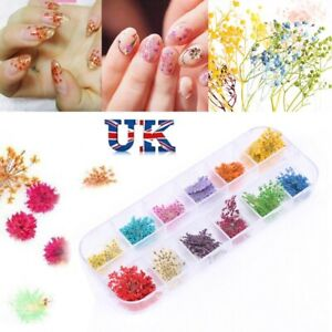 Mixed Dried Flowers 3D Nail Art Decoration Flower Manicure Beauty DIY Tool