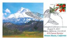 MOUNT SHASTA California Color Photo National Parks, Hummingbird Pictorial PM
