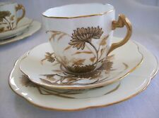 Wileman/Late Foley Shelley CHRYSANTHEMUM PLATE, CUP & SAUCER Lily Shape #6038