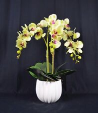 Artificial Phalaenopsis Orchid Plants with Ridged Ceramic Pot [Yellow]