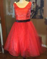 Light In The Box Red Mesh Tulle Dance Costume adult Dress costume ballerina tutu