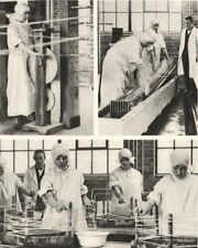 LONDON. Preparing Cat- gut at the London hospital's own Factory 1926 old print
