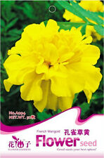 1 Pack 50 French Marigold Seeds Yellow Tagetes Patula Garden Flowers A094