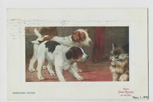 Tuck Pussyland 9707  unwelcome visitors  cat and puppies  posted 1909