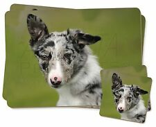 Blue Merle Border Collie Photo Slate Christmas Gift Ornament AD-BC10SL