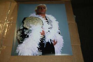 WWE WCW RIC FLAIR UNSIGNED 11X14 PHOTO ROBE POSE 16X WORLD CHAMP NATURE BOY COMP