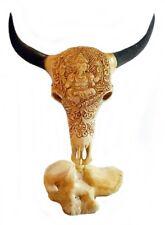 Büffelschädel Stierschädel aus echtem Knochen Skull Schädel 18 x 15 cm. UNIKAT