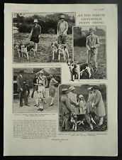 North Cotswold Hunt Puppy Show Broadway Kennels 1927 Page Photo Article