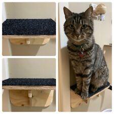 Cat Ledge-Step Up- Indoor