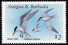 Антигуа и Барбуда (1981 г. - наст.вр.)