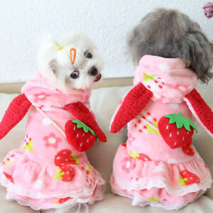 Small Medium Dogs Clothes Cute Strawberry Hooded Jacket Poodle Maltese Cold Coat