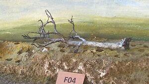 AUSTRALIAN MODEL Fallen Dead  GUM TREE   HO  OO  Lot F04