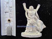 Grenadier 25mm Miniatures Dungeons & Dragons Fantasy Lords Lord Rings Shadowrun