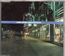 SKUNK ANANSIE SKIN CD single 3 tracce CHARLIE BIG POTATO 1999 + 3 POLAROID