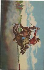"1945 Giant Linen Rodeo Postcard "" Al Wilkenson on Torpedo """