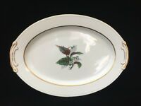 Vintage Imperial Craftsman Japan Porcelain China Begonia Oval Serving Platter