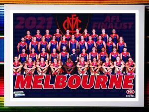 ✺Framed✺ 2021 MELBOURNE DEMONS AFL Premiers Poster - 45cm x 32cm x 3cm Finalist