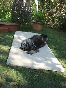 *Aktion* Hunde-und Katzedecke, Kuscheldecke XL Größe 75 x 100 cm