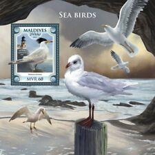Maldives  2018 Sea birds MS  S201806