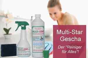 Multi Star Gescha Reiniger 1 Liter Set inkl Sprühflasche + Seifenkern-Schwamm