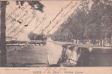 LUCCA - Le Mura - Cortina Buona 1906