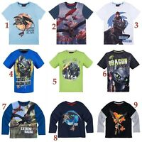 Boys Kids Children Dragons How to Train Your Dragon T-shirt Top Age 4 - 12