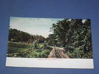 VINTAGE  MOUNTAIN ROAD NEAR NORTHVILLE  NEW YORK   POSTCARD