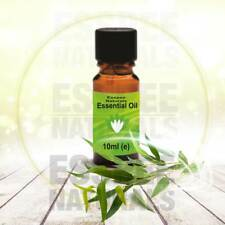 Eucalyptus Essential Oil 10ml - 100% Pure - For Aromatherapy & Home Fragrance