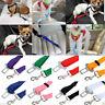 Clip de cinturón de seguridad conductor mascota gato perro seguridad proteger