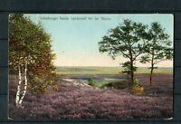 Lüneburger Heide Landschaft bei der Günne