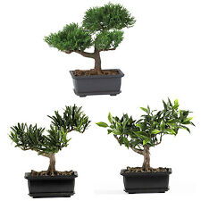 "NEW BONSAI 8.5"" TREES ARTIFICIAL HOUSEPLANTS GREEN NATURAL FAUX FAKE DECORATION"