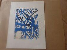 magnifique  lithographie JAPON signature  numéro 618 / 700