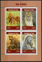 Chad 2019 MNH Lions 4v M/S Big Cats Wild Animals Stamps