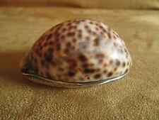 ancienne tabatière dans une porcelaine coquillage et monture argent XIX ème