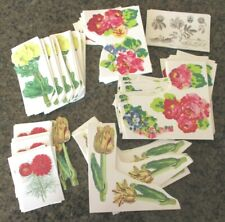 Anna Griffin FLORAL CUTOUTS Flowers 208 pieces Punch Out
