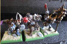 Warhammer Warriors of Chaos Ogres regiment OOP metal fully painted