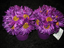 PAIR OF PURPLE DAISIES IN CLAY POTS - NWT - GIVE YOUR HOME THAT COUNTRY FEEL!