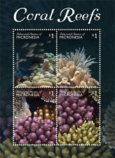 Micronesia-2015-Marine life-Coral reef