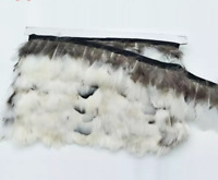 Off White Lady Amherst Pheasant Feather Fringe Ribbon Trim Price for 30cm Craft