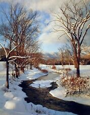 Winter Stream with Snow Landscape Nature Wall Decor Art Print Poster (16x20)