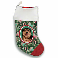 Norfolk Terrier Christmas Stocking