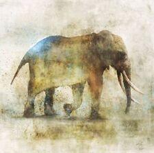 KEN Roko : Pachyderm DANZA 1 Imagen TERMINADA 50x50 Mural Elefante Moderno