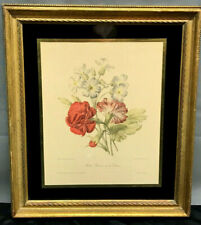 c.1860s Hand-Colored Lithograph CARNATIONS Antique Victorian FRAMED - floral