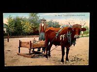c1918 Rural Transportation In Dixie Land Vintage Postcard