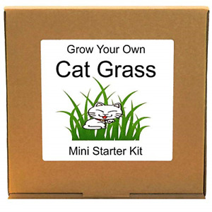 Grow Your Own Cat Grass Plant Kit – Unusual Cat Lover Gift