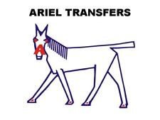 Ariel Tank Top Transfers Decals Motorcycle D50966