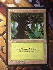 Forest (Version 3) (Foreign Black Bordered)   FBB   MTG Magic (LP)