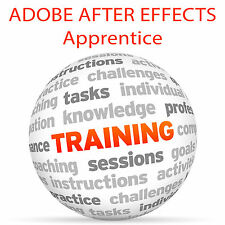 Adobe After Effects apprendista parte 3-Video formazione tutorial DVD