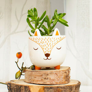 Sass & Belle Mini Woodland Fox Planter Home Decor Gift