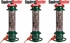3- Pack Brome Squirrel Buster Plus Bird Feeder w/ Cardinal Perch Ring 1024 - Squ